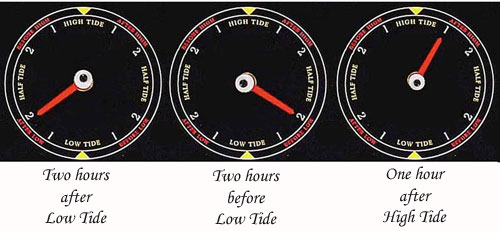 Three Tide Clocks indicating Three Different Cycles